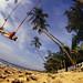 Tree Swing 1