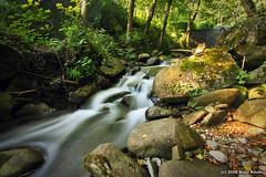 Camaldoli stream, Tuscany. (Andy Allum) Tags: longexposure canonefs1022mmf3545usm canon1022mm canoneos40d