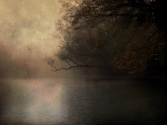 Agva autumn (mrkubi) Tags: reflection tree misty fog turkey river dark landscape trkiye ava fogy agva thechallengegame challengegamewinner