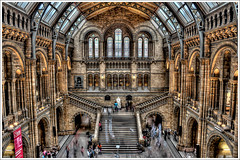 HDR - NaturalHistoryMuseum V.@.1200x799 (Pawel Tomaszewicz) Tags: wallpaper england sky building colors beautiful museum architecture clouds photoshop canon buildings photo europe angle image photos wide picture wideangle ps images x 1200 british 1855mm 800 hdr muzeum fable hdri anglia iphone pawel cs3 ipad architektura budynek neatimage chmury muzea 3xp photomatix budynki greatphotographers eos400d 1200x800 photoshopcs3 todaysbest tomaszewicz paweltomaszewicz