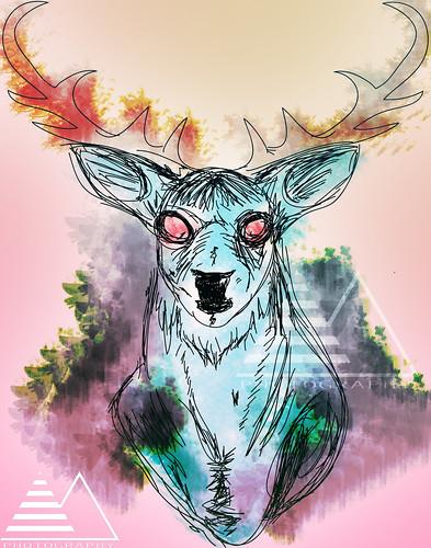 Deer by Molinafucker