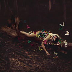 the fallen (Ingrid Endel) Tags: life trees tree nature girl beauty forest butterfly death darkness butterflies human treetrunk colourful protection mend swarm mending heal thefallen texturebylesbrumes