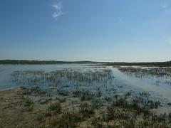 Estuaire de la Canche