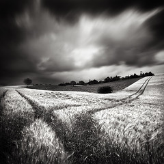 Crossroads (Laurent Miaille) Tags: longexposure field landscape corn wheat champs campagne bl ndfilter naturepoetry goyrans