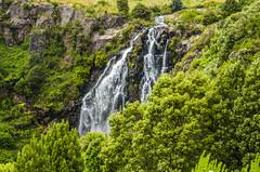 Waterfall in the middle of town in Waratah, Tasmania (firstfire53) Tags: australia tasmania waratah