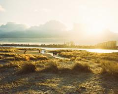 untitled (Esben Bøg) Tags: 120mm mamiya 7 beach amagerstrand canonscan 8800f film analog analogue 80mm leaf 40 grain amager scan setting sun kodak portra 400 outdoor denmark landscape sky sea cloud