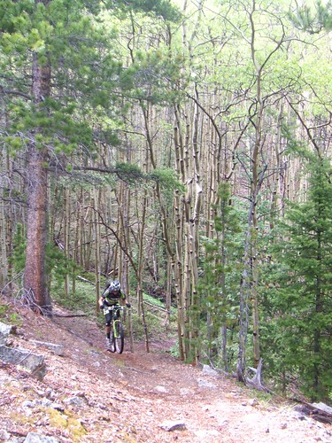 Saturday training (CO Trail)