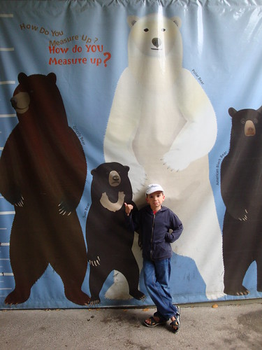 zack the bear