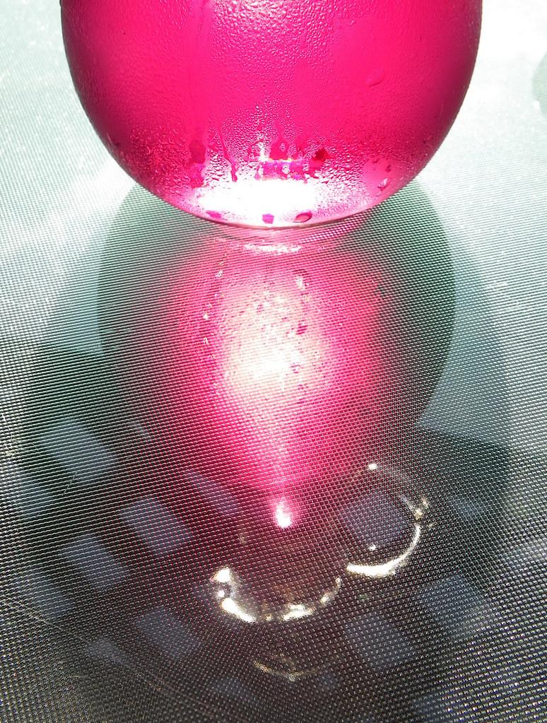 Chive Blossom Vinegar VI
