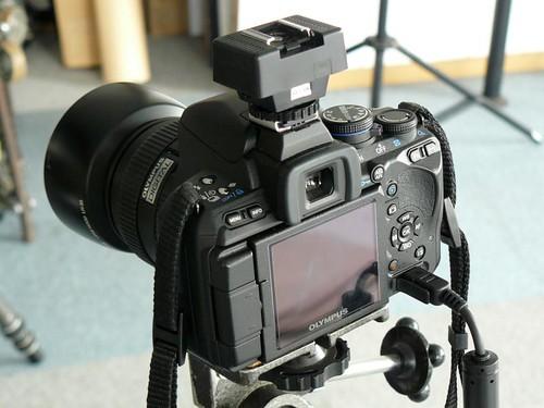 P1130296