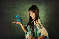 Birdy birdy (claudiaveja) Tags: flowers blue bird girl photography merci gorgeous profile stock young longhair images claudia concept transylvania veja birdy cluj royaltyfree brunet andrada rightsmanaged claudiaveja rightmanaged