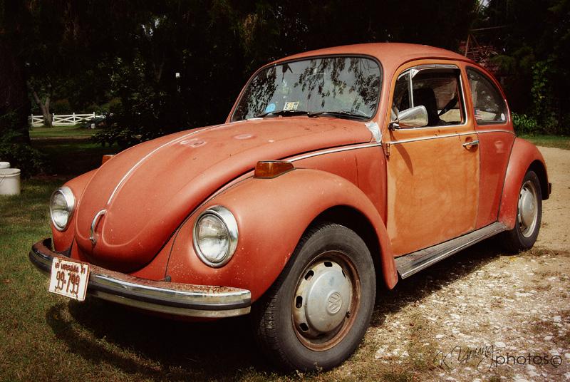 Volkswagen Heaven