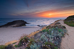 "Go West (Luis ""Morningrise"" Jordao) Tags: flowers sunset fish beach portugal river sand holidays rocks path dunes grilled alentejo odemira vilanovademilfontes costavicentina colorphotoaward ilustrarportugal srieouro"