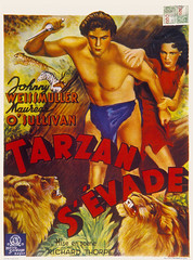 Tarzan s'evade (vatop) Tags: johnny weissmuller