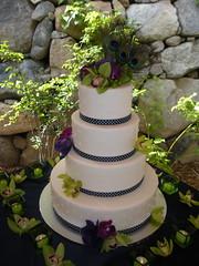 Martino Cake