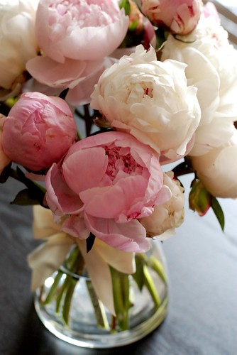 Peonies in June