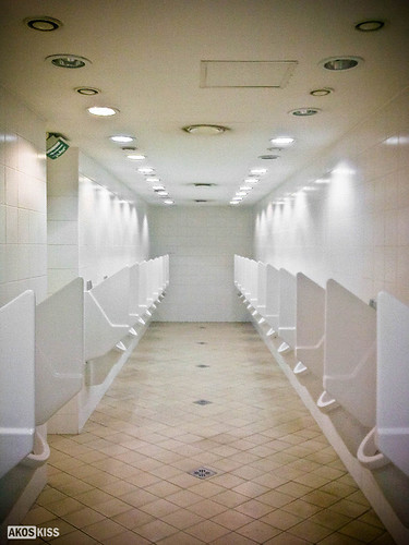 The Gentleman's Toilette