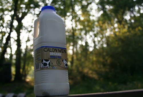 calon wen milk labels
