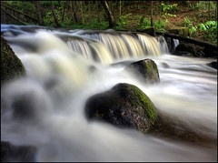 Thingy falls (angus clyne) Tags: trees forest river scotland waterfall moss stream rivertay perthshire tay burn dunkeld mossy birnam flikcr colorphotoaward