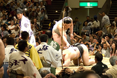 日馬富士 画像78
