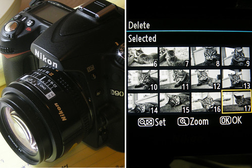Checking Out the 'Contact Sheet' for My New (Old) Prime Lens