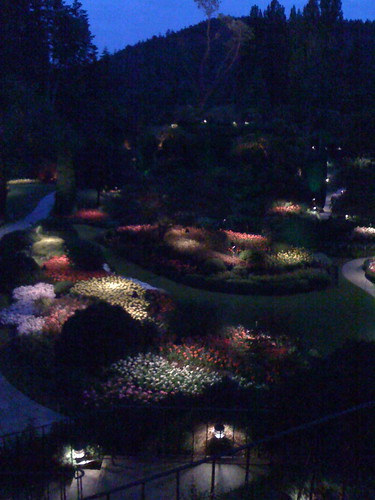 sunken garden, night