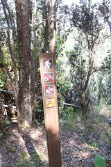 Kilauea Iki Trailhead Photo