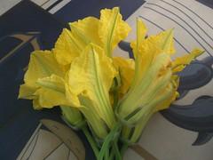 kolokithoanthous pumpkin zucchini flowers