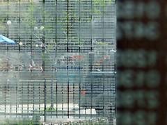 P1050136 (Salomon Salvador) Tags: tourism boston massachusetts beantown