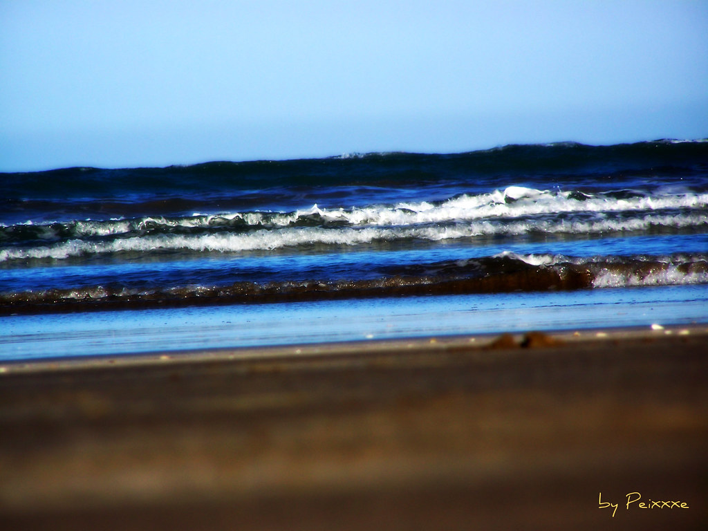 151/365 - Meu Mar, My Sea