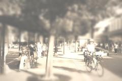 町田樹 画像61