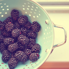 sweetness (*Azzari) Tags: blue windowsill blackberries colander explored gabriellekaiphotography