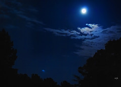 Night Sky in the Neighborhood (Explore) (Maggggie) Tags: night sky moon reflection brightnight clouds blue topazadjust nikond60 explored