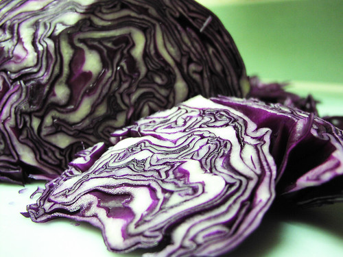 Cabbage Rorshach III