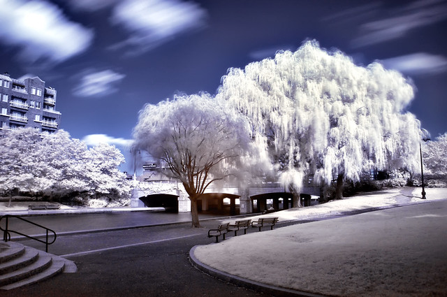 A different World in Infrared (Boston/Cambridge)