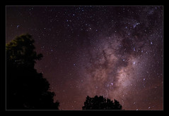 Stardust (hades.himself) Tags: trees sky night nikon galaxy astronomy luis nikkor hades stardust milkyway 35mmf2d astrophotograpy d700 balbinot