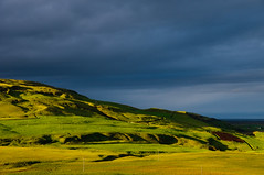 Icelandic Light (Xindaan) Tags: travel sunset vacation sky holiday green nature contrast landscape geotagged island 50mm evening iceland islandia nikon europe soft sonnenuntergang sheep hill natur dramatic lush nikkor landschaft f8 2009 sland islande isl schafe islanda d300 1685 kirkjubjarklaustur vesturskaftafellssysla 1685mm 1685mmf3556gvr afs1685mm geo:lat=6376866930 geo:lon=1815710926 mygearandme mygearandmepremium mygearandmebronze