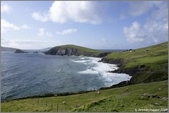 Slea Head (grundi1) Tags: ireland sea drive meer head sony dingle irland eire cliffs 300 alpha peninsula klippen slea dunbeg halbinsel