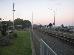 Train on The Strand in Tauranga 2
