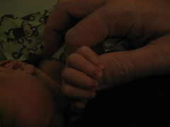 For two days old, he has a strong grip, even if his hands are so tiny.