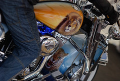 PaintNChrome008_DSC4499 (eyejewels) Tags: uk reflection tattoo honda october brighton colours indian sunday motorbike chrome harleydavidson promenade triumph motorcycle suzuki tshirts seafront airbrushing eastsussex carlights valkyrie tattooing customcar custombike hellsangels brightonandhove chopshop classicbike madeiradrive motorbikerally