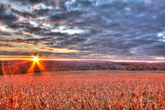 Pittsford Sunrise