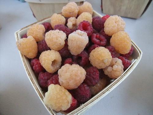 Rapsberries 10/10/09