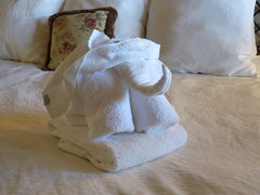 What housekeeping get up to with your towels (antgirl) Tags: elephant towels