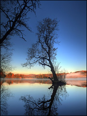 Sunrise - Loch Clunie (angus clyne) Tags: autumn mist reflection tree fall sunrise dawn scotland branch perthshire loch alder flikcr clunie lochclunie