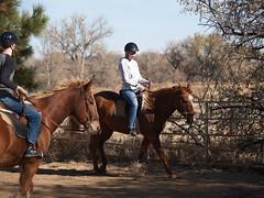 E and Z riding (lostinfog) Tags: november 2009 mac dunny colorado e300 riderzm horse riding