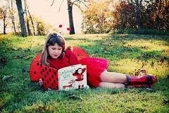 L A D Y B U G      G I R L (holleygrace77) Tags: girl ladybug tutu florabella ladybuggirl shanarae wingsflorabella