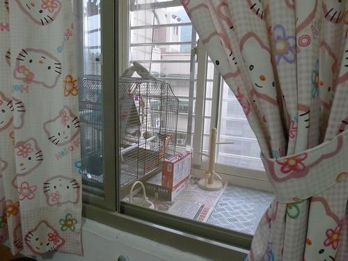 從房間看小陽台 (外面已加裝窗戶)