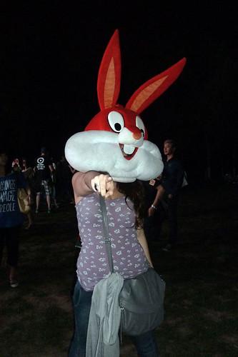 Midi Music Festival Bunny
