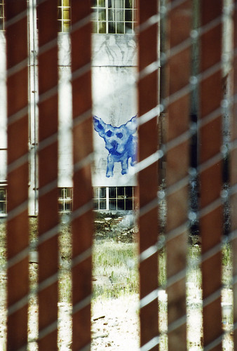 1990s Dog graffiti 6